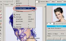 Vertus Fluid Mask v3.3.8中文汉化版-PS智能抠图滤镜软件使用教程