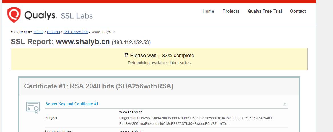 全球知名的HTTPS网站检测工具-Qualys SSL Labs 第1张